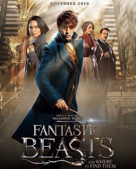 Affiche du film Fantastic Beasts and Where to Find Them
