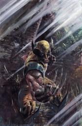 Ardian Syaf Wolverine Collage 3