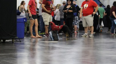 Comicpalooza 2017 - Flash Dog 2