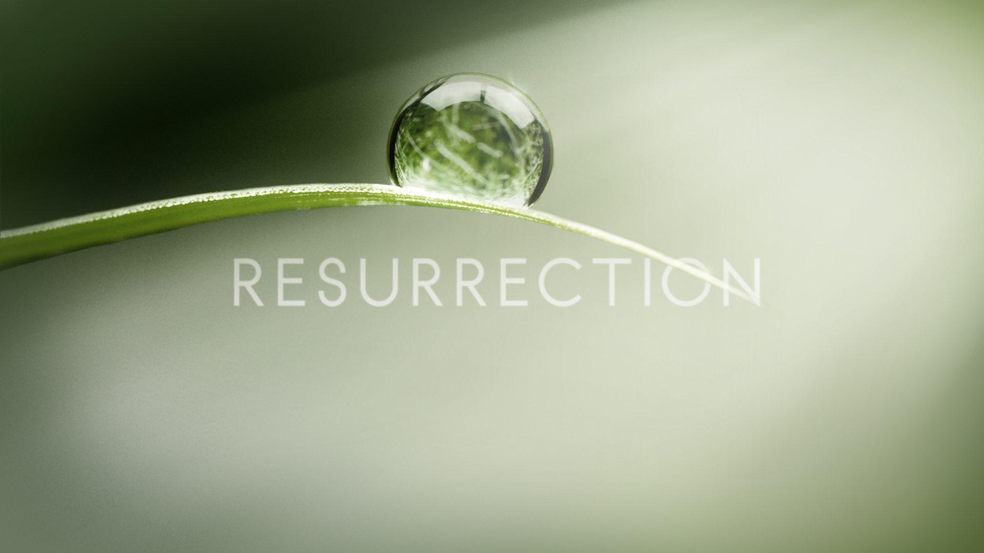 ABC's Resurrection: Lost-esque Mysterious TV Makes a Comeback