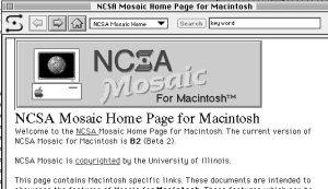 Early NCSA Mosaic Screen Photo credit: ghbrett via flickr