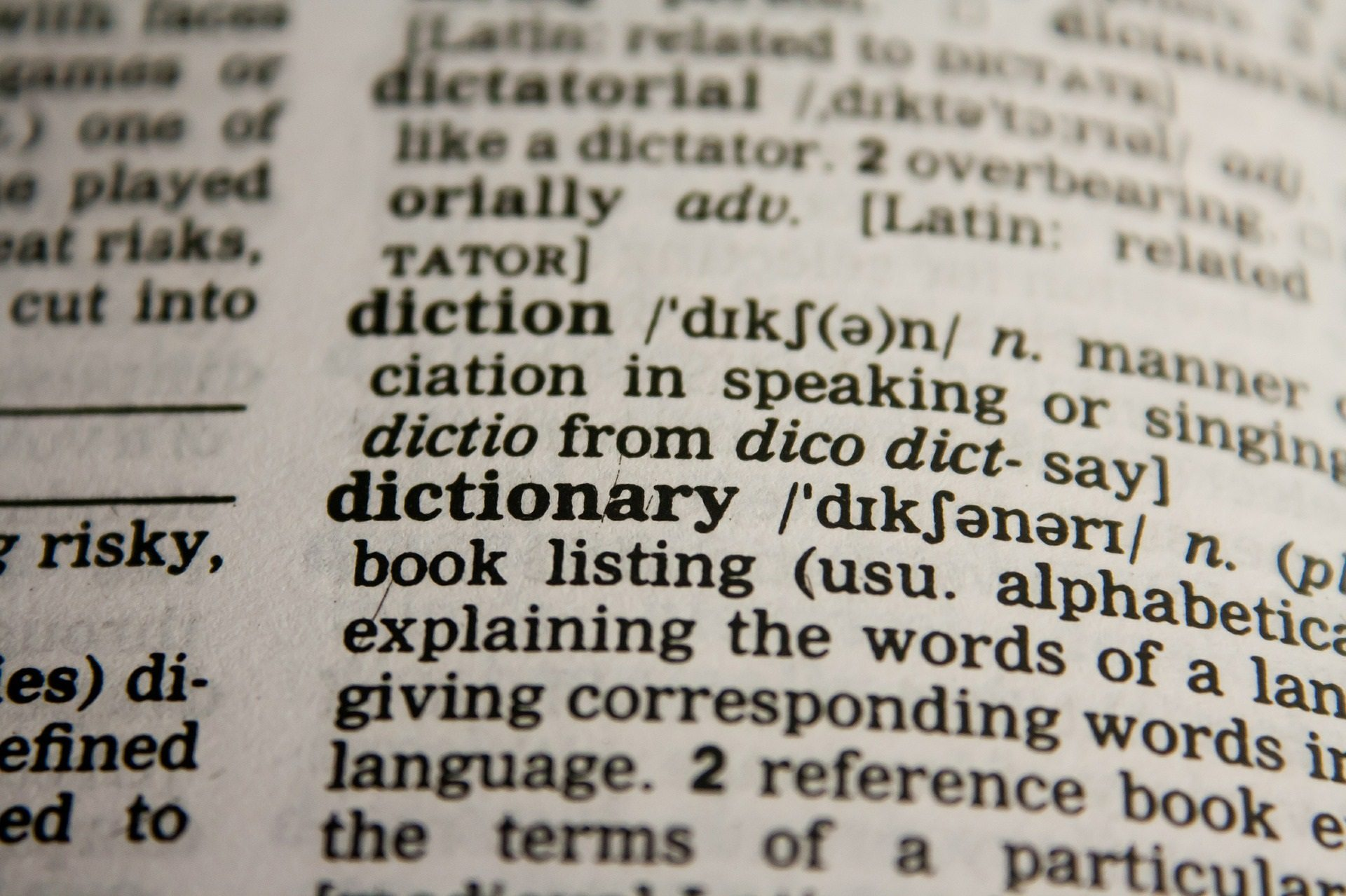 word nerd, word games, dictionary games,