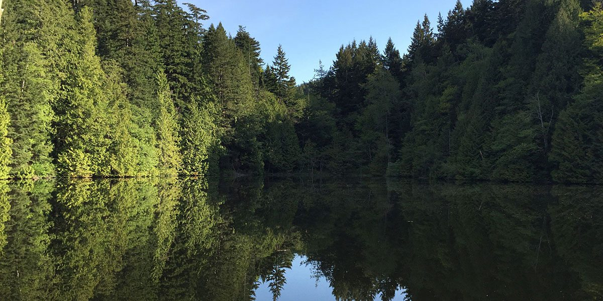 Running Geek: Lost Lake – My First 50K