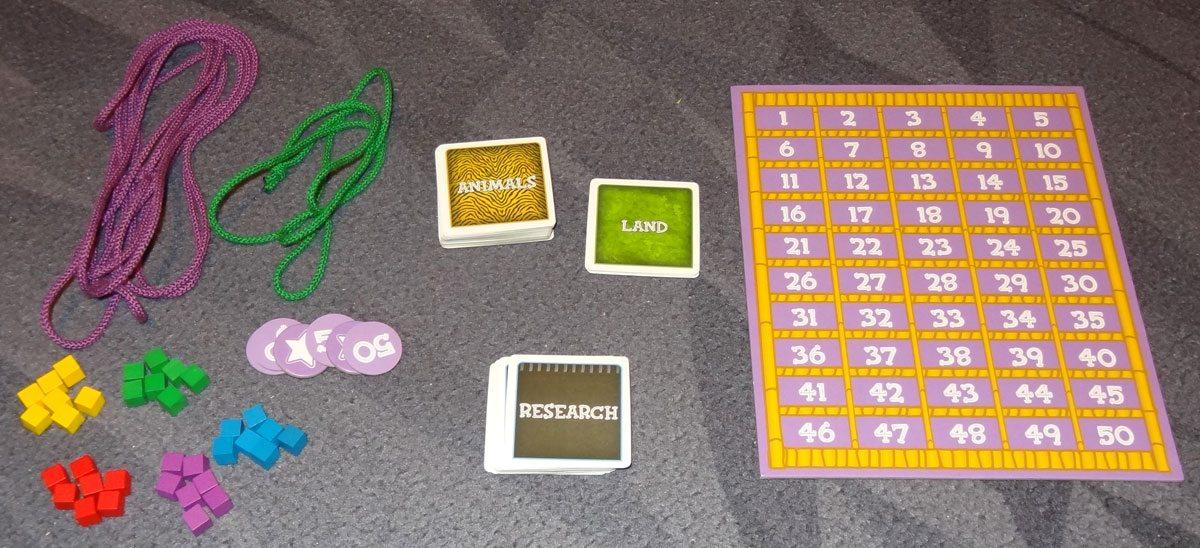 String Safari Components