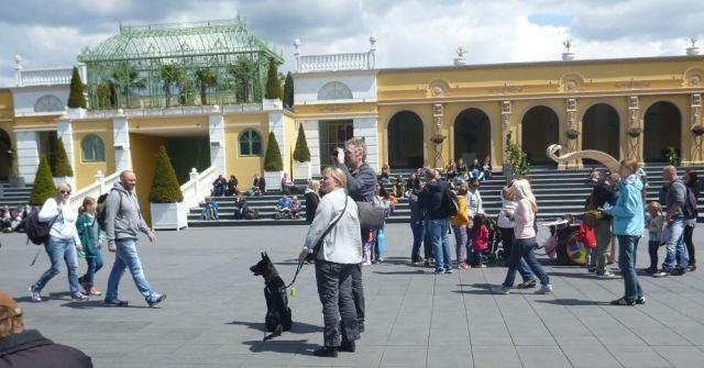 Someone with a dog at Phantasialand