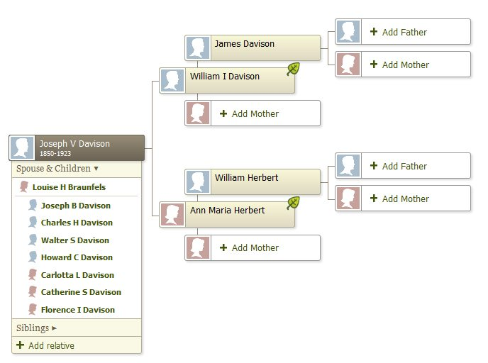 Part of my family tree, displaying the leaf hint indicators. Screenshot: Jenny Bristol