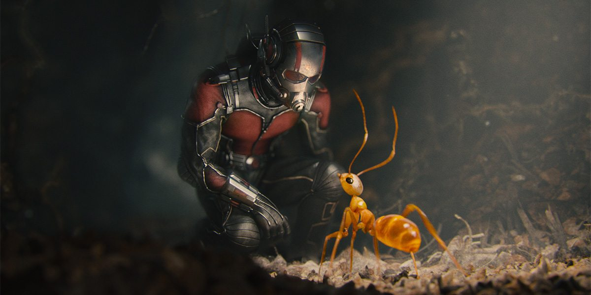 Marvel's Ant-Man..Ant-Man/Scott Lang (Paul Rudd) w/ one of his crazy ants...Photo Credit: Marvel 2015