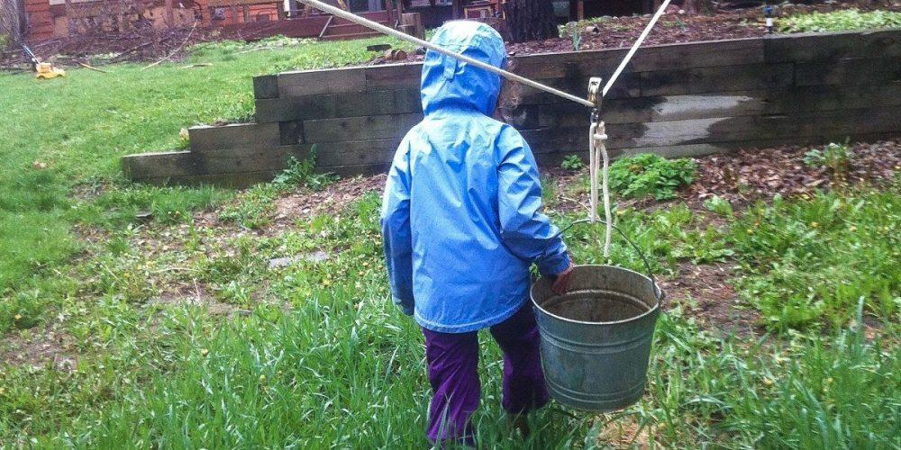 Backyard Play Revolution