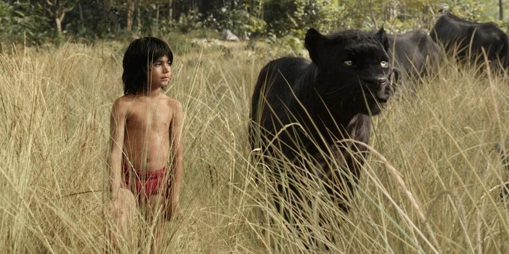'The Jungle Book:' Acceptance Is Strength