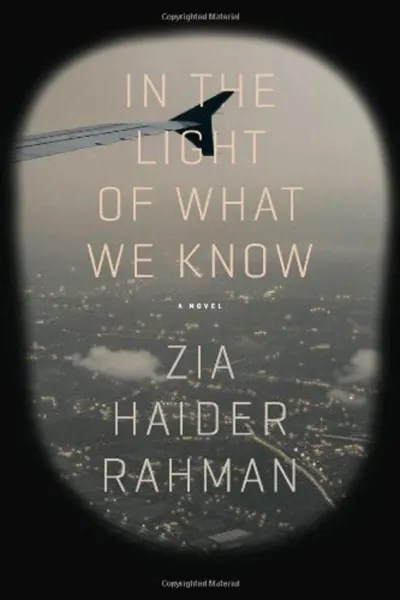 In the Light of What we Know Cover