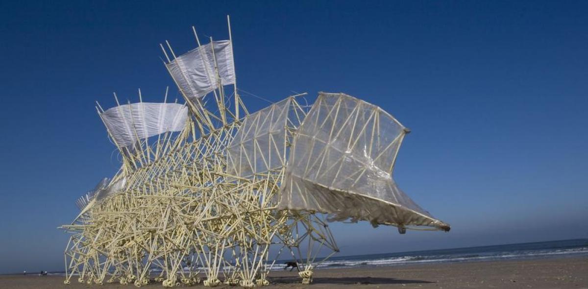 Animaris Umerus, Silent beach (2009). Coutesy of Theo Jansen and Exploratorium. Photo by Loek van der Klis