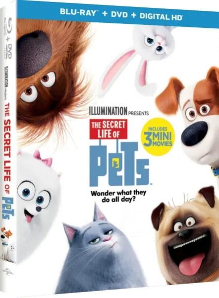 pets-3d