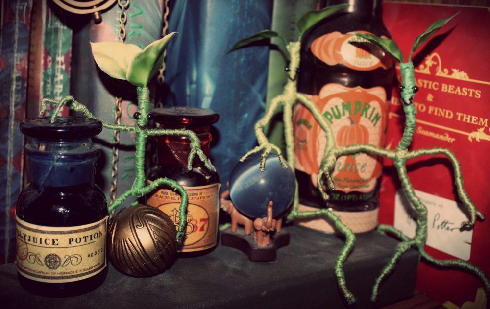 DIY Newt Scamander Bowtruckles