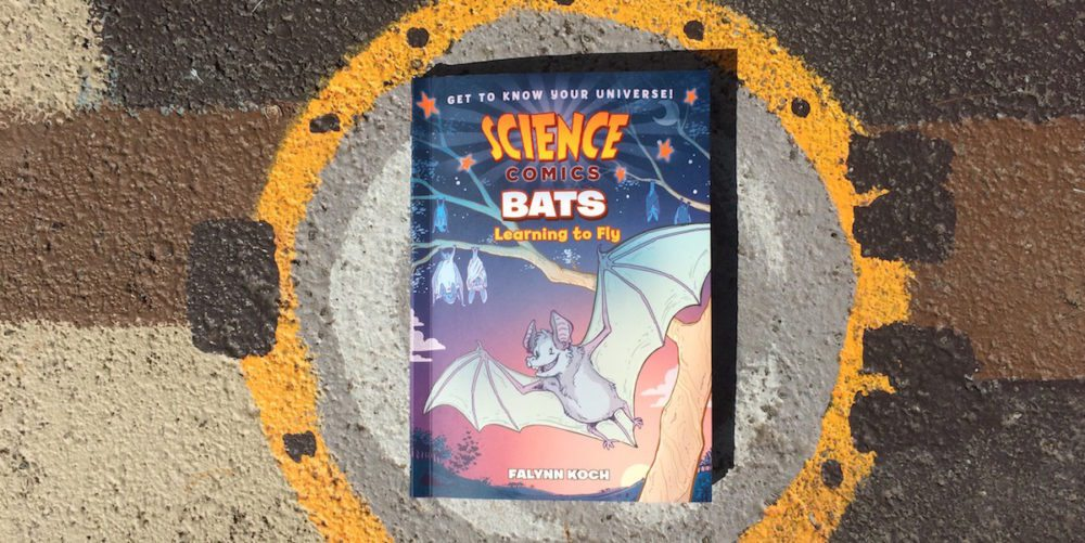 Science Comics Brings Us 'Bats: Learning to Fly'