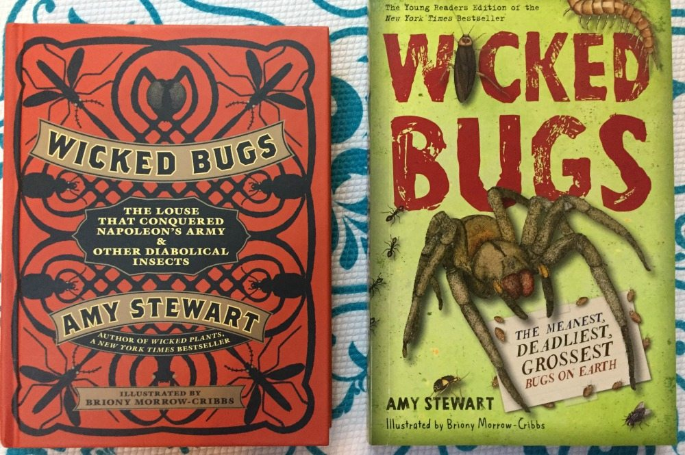 A Creepy-Crawly 'Wicked Bugs' Summer Book Club for Families