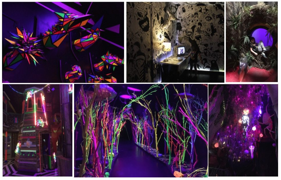 meow wolf color