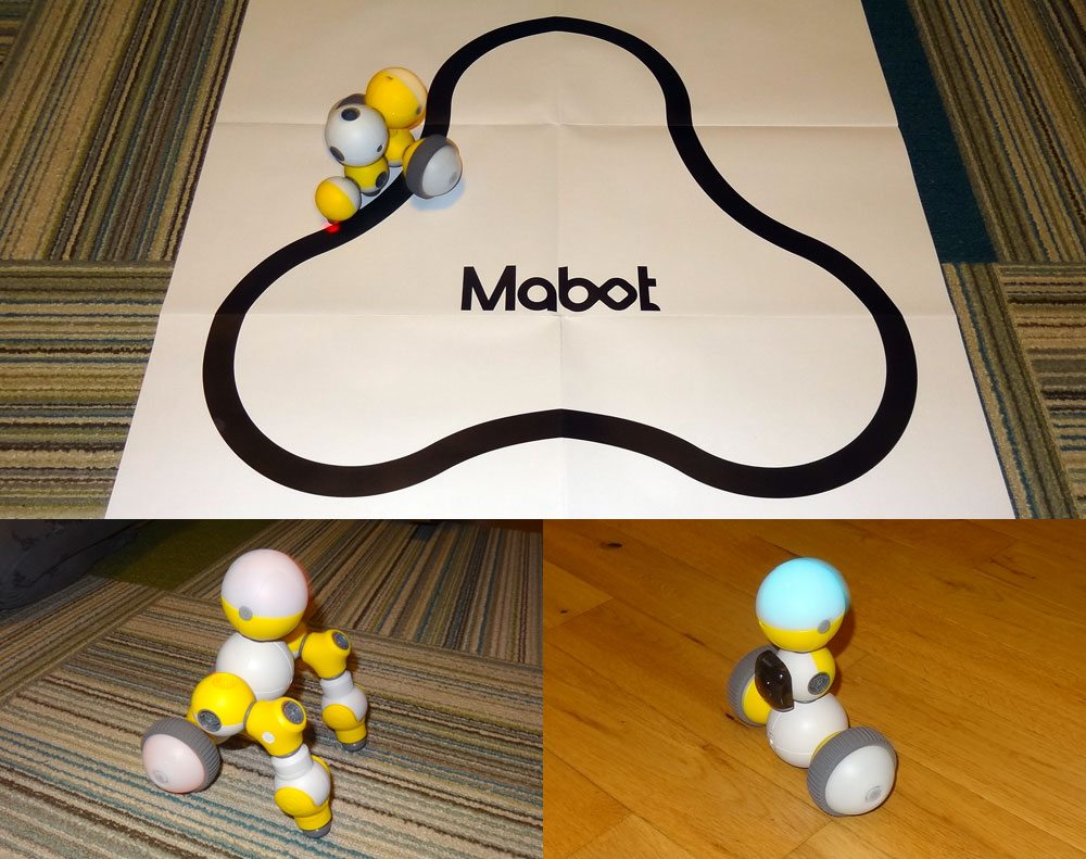 Mabot models