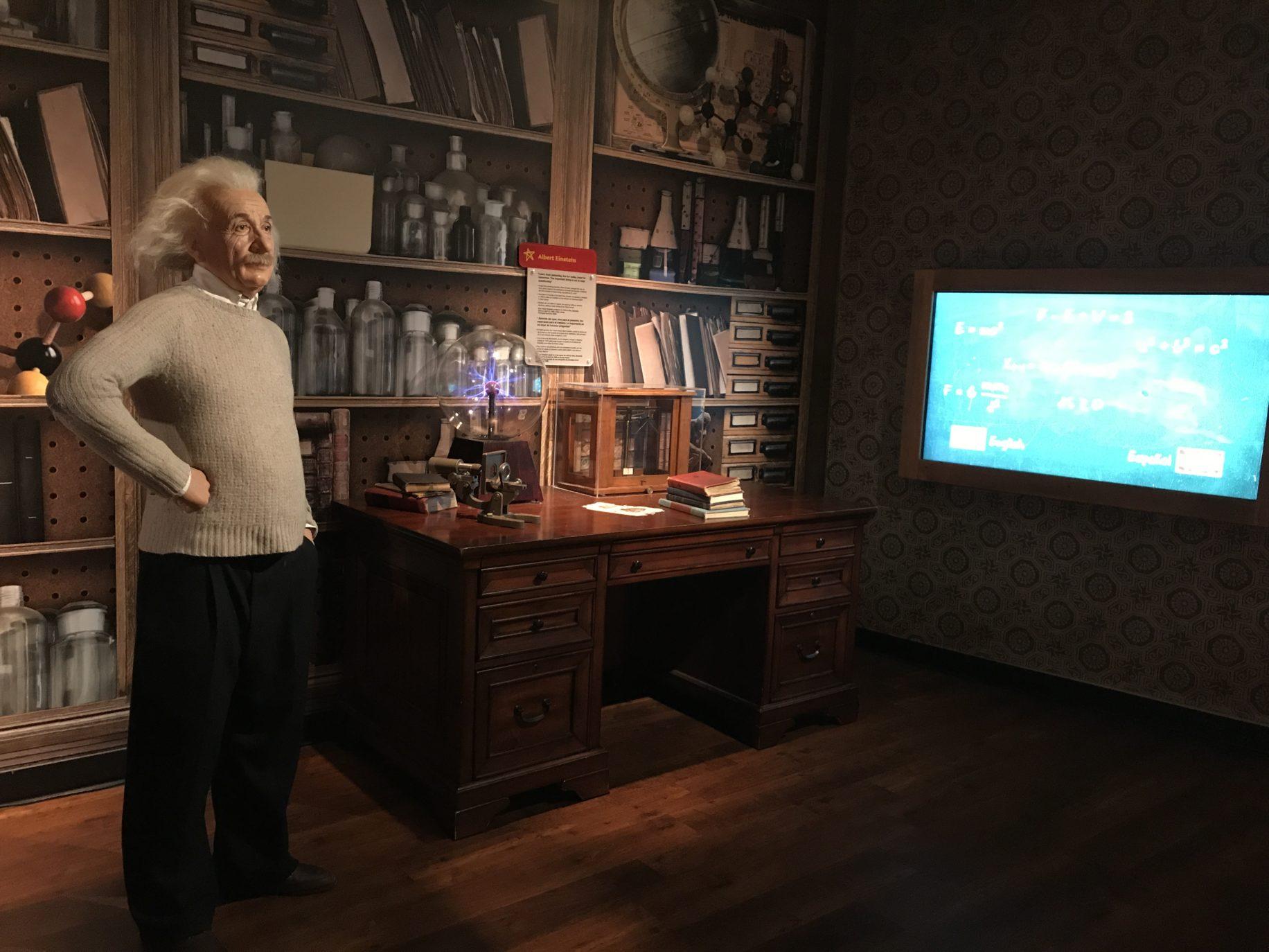 Einstein  Image: Dakster sullivan