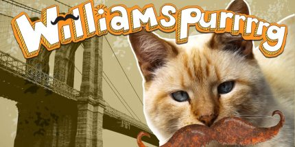 Williamspurrrrg: Hipster Cats for the Whole Family