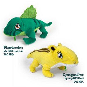 Evolution Toys for Kids!