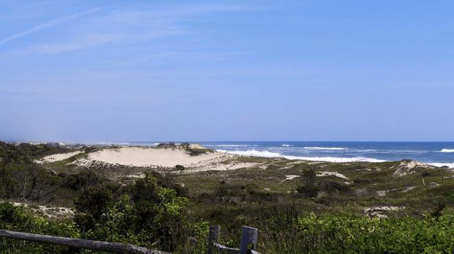 Maidstone-BeachView