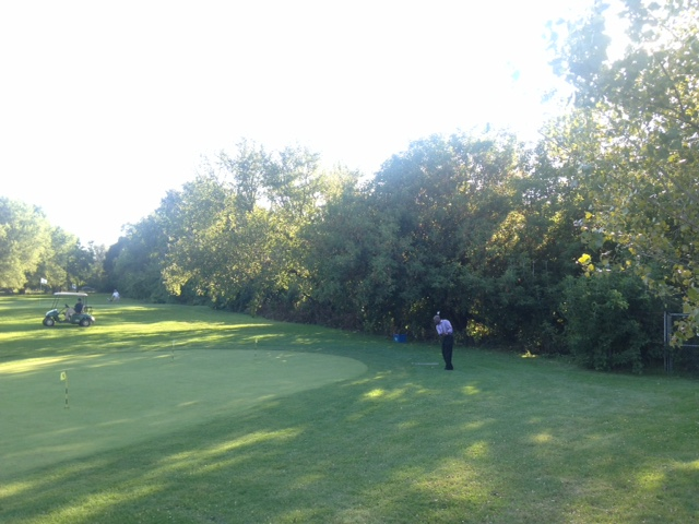 Overgrown treeline on hole #2, prior to the clean-up and clearing process.