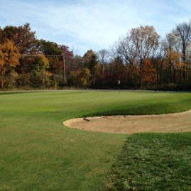 #2 - Classic looking Raynor greens of all shapes and sizes abound at Shoreacres.