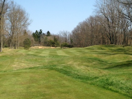 #3 - Grassy mounds split the fairway, creating an island for layups