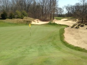 #8 - From the back-right, the green is wide and shallow