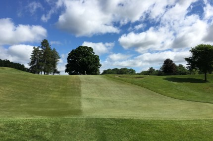 #7 - Par 3 - Short shots roll down to the bottom of the hill