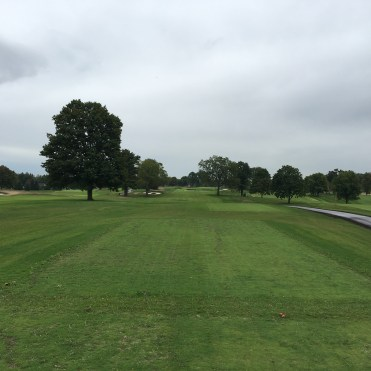 meadowbrook17-tee