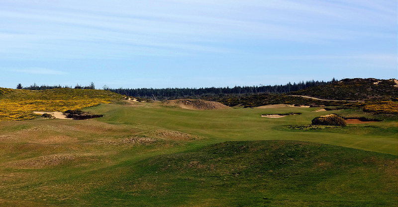 OldMac16-Fairway.jpg