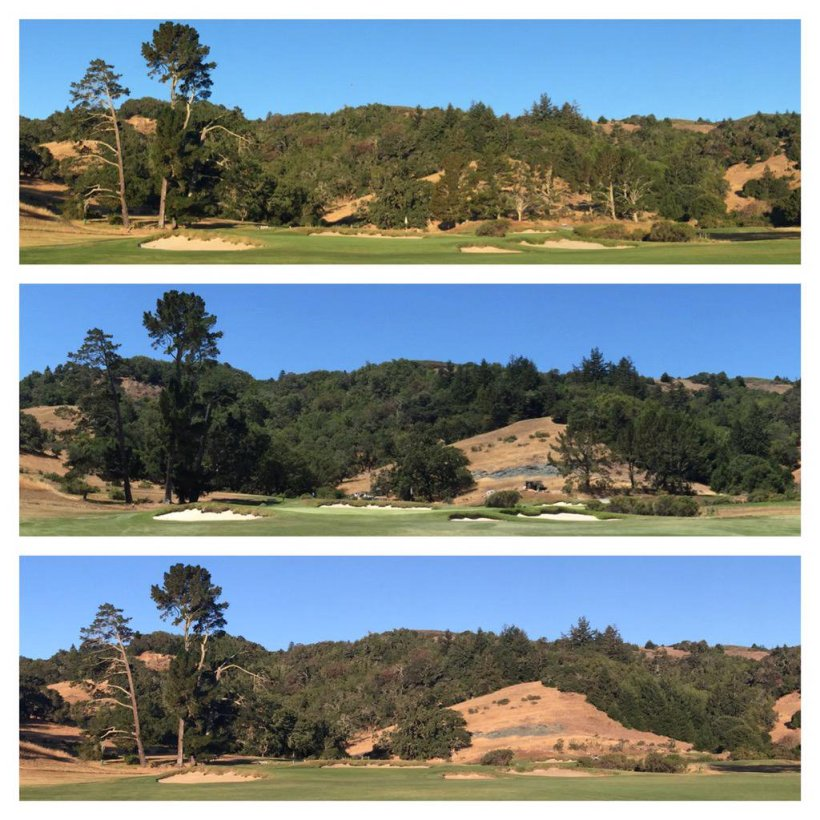 MeadowClub-BeforeAfter.jpg