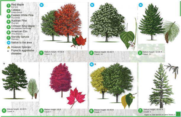 CanalShores-TreeInventory4.png