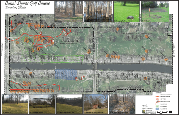 CanalShores-TreeInventory7.png