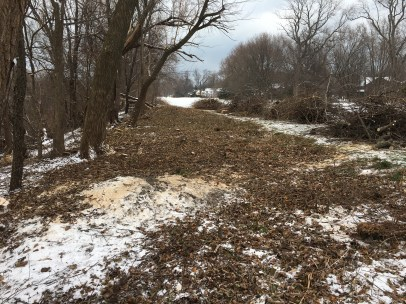 CanalShores17-TeeCleanupAfter2_120917