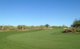 DesertForest1-Fairway