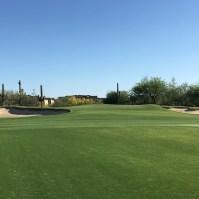 DesertForest10-Approach