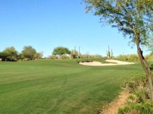 DesertForest5-Approachleft