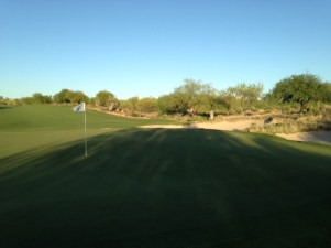 DesertForest9-Greenback