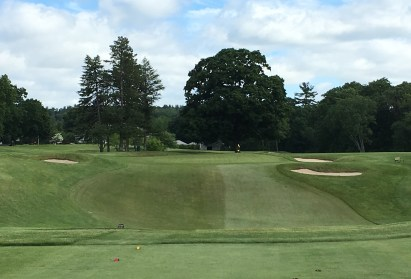 #7 - Par 3 - From the tee, with valley to cross
