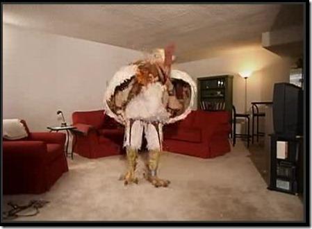 Subserviant Chicken