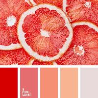 Colour Palette - Red Oranges