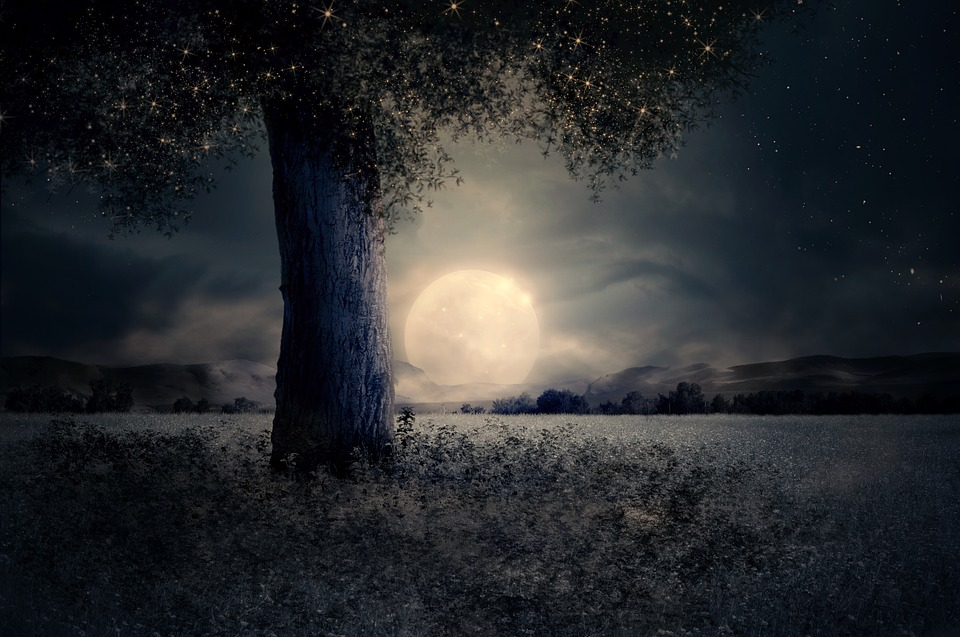the moon. credit: https://pixabay.com/en/night-landscape-tree-fairy-tale-2539411/