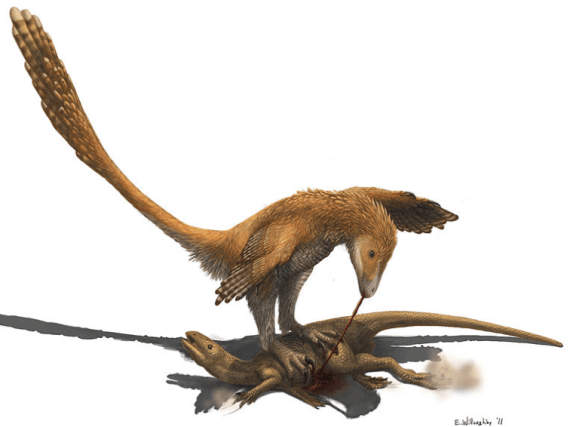 deinonycus eating zephyrosaurus
