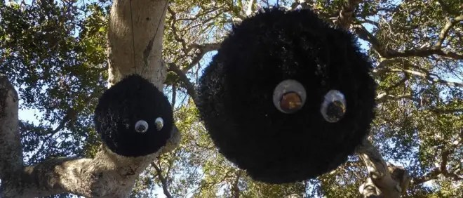 Soot sprites hang over the picnic tables. Photo by Marie Payette.