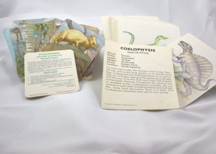 Amongst childhood treasures were not one but two sets of dinosaur collectible cards with facts on the backs.
