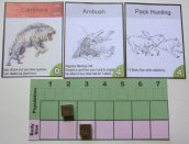 A simple carnivore setup. If this species attacked a new species with few defensive traits, it would probably survive. Image: Cathe Post