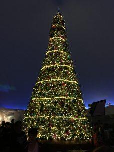 Ohh Christmas Tree... Image: Dakster Sullivan
