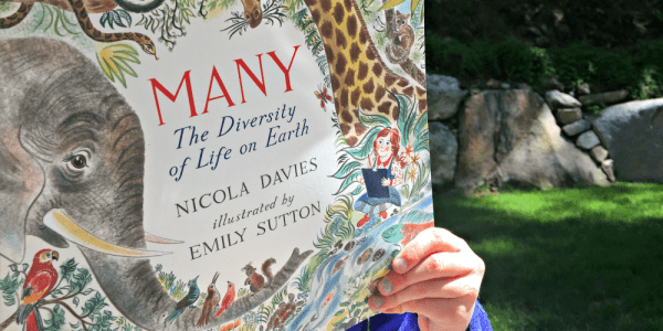 Delight Animal Lovers with 'Many: The Diversity of Life on Earth' by Nicola Davies | Caitlin Fitzpatrick Curley, GeekMom